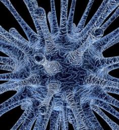 Coronavirus Update: China is getting back on track