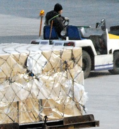 Quick Update: Air Freight Suffers from Europe Travel Ban